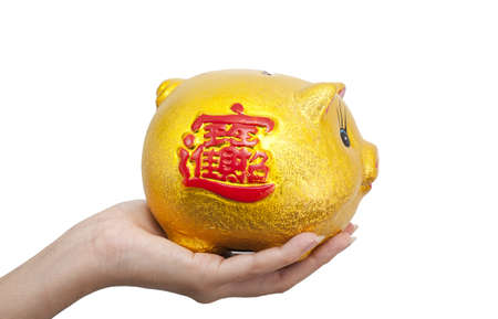Isolated: Hand put coin to piggy bank Stock Photo - 8556364
