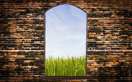 Vintage brick wall Stock Photo - 8584792