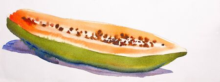 Papaya abstract Water Color photo