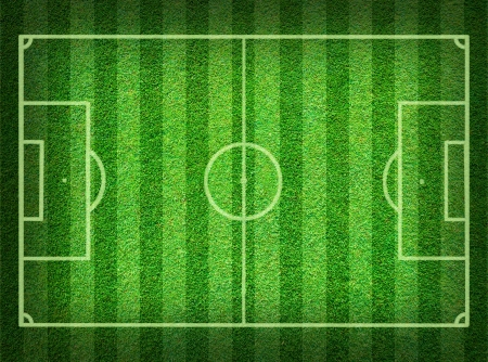 football field: Real green grass soccer field background