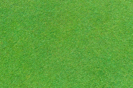putting green: Real green grass background