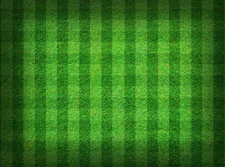 Real green grass field background photo