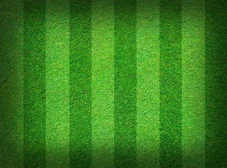 campo di calcio: Sfondo del campo reale verde erba