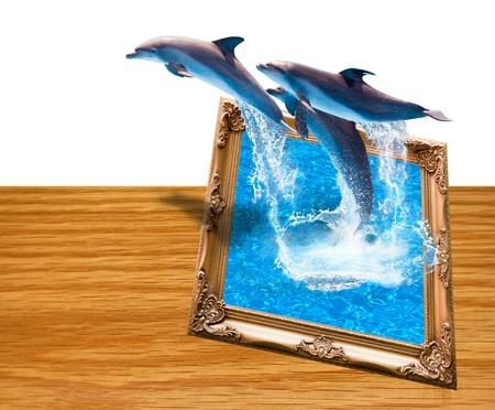 Magic photo frame with three dolphins jump Stock Photo - 9520029
