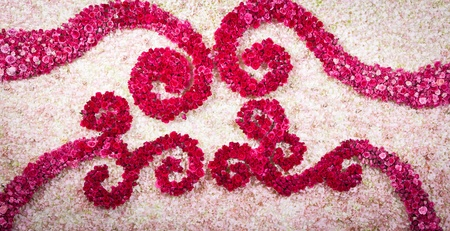orchild and red rose backdrop decorate for wedding ceremony photo