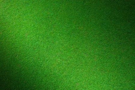 Real green grass background photo