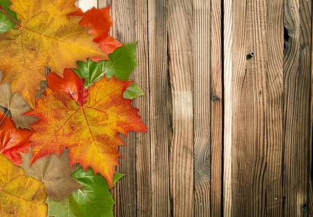 Autumn Leaves over wood background.With copy space Stock Photo - 10598330