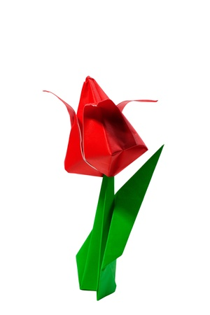 Origami red tulip isolated on white photo