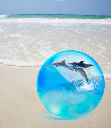 Dolphine jumping in crystal over sand and  sea photo