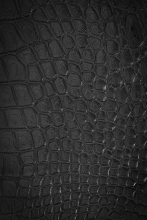 snakeskin: Crocodile leather texture Stock Photo