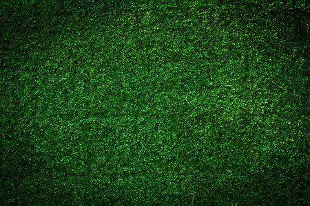 Artificial Grass leaf background photo