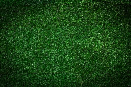 Artificial Grass leaf background