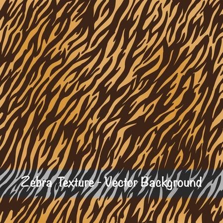 huella animal: Vector-Zebra textura de fondo Foto de archivo