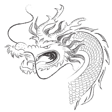 vector Chinese dragon photo