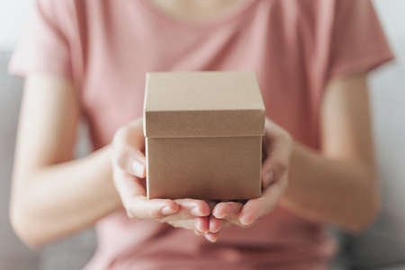 Close up of woman hands holding a small gift box. Small present box in the woman hands. 免版税图像