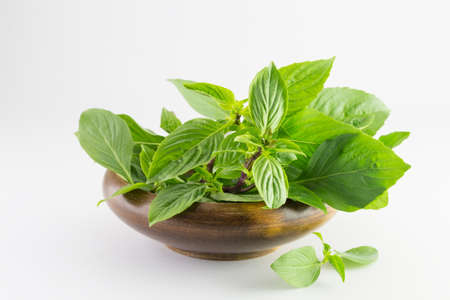 basil leaves in a wooden bowl isolated on white background