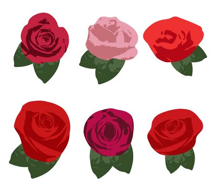 Set of 6 red roses, white background for various functions, cards, banners, websites, illustrations - vector 向量圖像