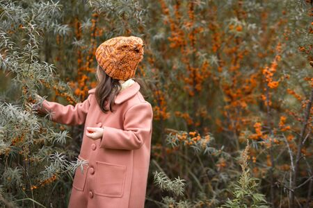 A beautiful girl in a brown coat and orange wool hat picks sea buckthorn berries. bushes in the background. Autumn horizontal portrait of a kid. side view.