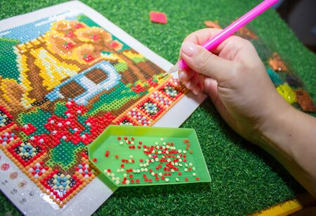 Diamond mosaic - modern needlework. DIY kit for making a shining picture of beads.