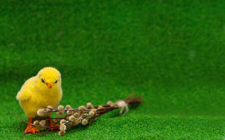 artificial yellow fluffy chicken sits on a green lawn with a willow twig on the left. copyspace. Easter.