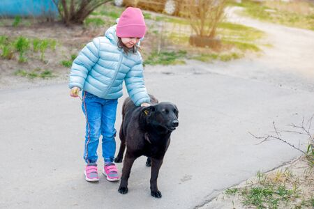 a little kid girl in a blue jacket and pink hat stroking the head of a black large stray dog in the yard. Foto de archivo