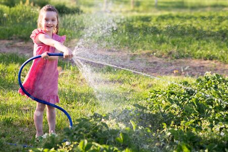 funny kid girl in a red checkered dress splashes water, hose out the beds with strawberries.