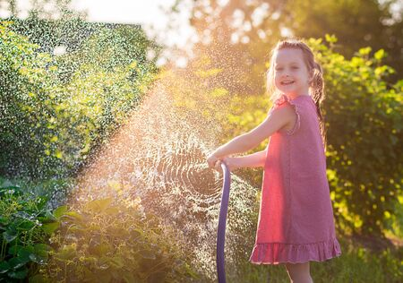 funny kid girl in a red checkered dress sprinkles water, hose out the beds with strawberries. sunlight.