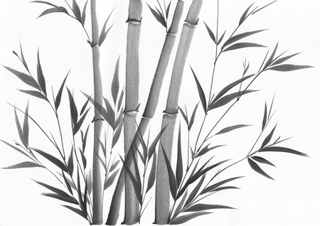Original art, watercolor painting of bamboo, Asian style painting Stock Photo - 14451407