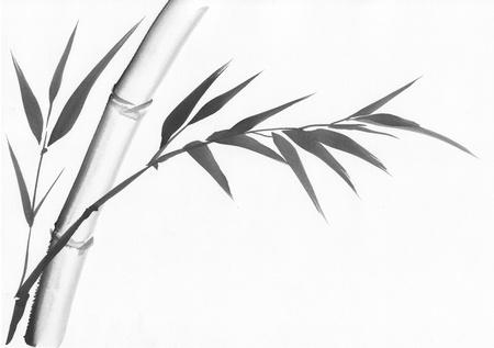 L'art original, peinture à l'aquarelle de bambou, peinture de style asiatique