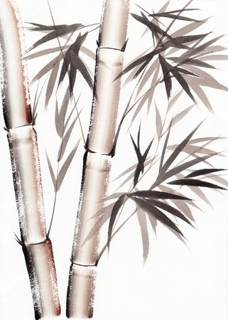 Original art, watercolor painting of bamboo, Asian style painting Stock Photo - 15177509