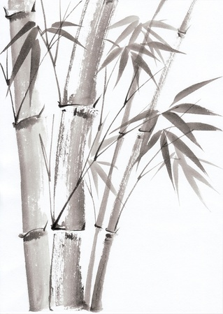 Original art, watercolor painting of bamboo, Asian style painting Stock Photo - 15177508