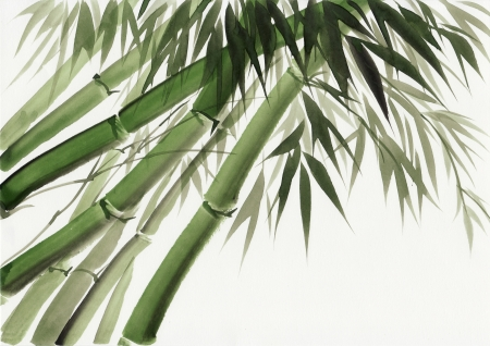 Original art, watercolor painting of bamboo, Asian style painting Stock Photo - 15985241