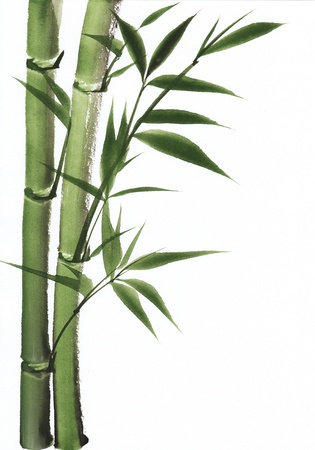 bamboo leaves: Original art, watercolor painting of bamboo, Asian style painting