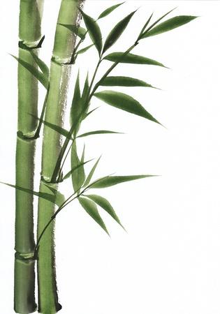 Originele kunst, aquarel schilderen van bamboe, Aziatische stijl schilderen Stockfoto