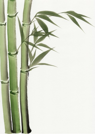 woody: Original art, watercolor painting of bamboo, Asian style painting