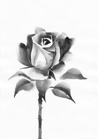 sumi e: Watercolor rose original painting – asian style