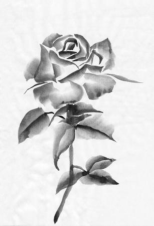 sumi e: Watercolor rose original painting, asian style
