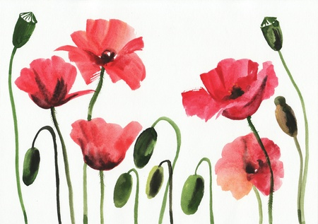 brushstrokes: Original art, watercolor painting of red poppies