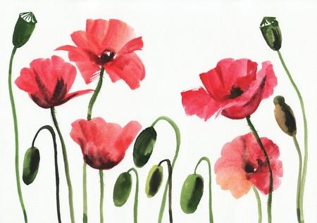 Originele kunst, waterverf het schilderen van rode papavers Stockfoto