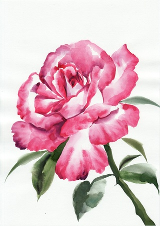 sumi e: Watercolor rose original painting � asian style