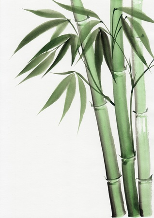 Original art, watercolor painting of bamboo, Asian style painting