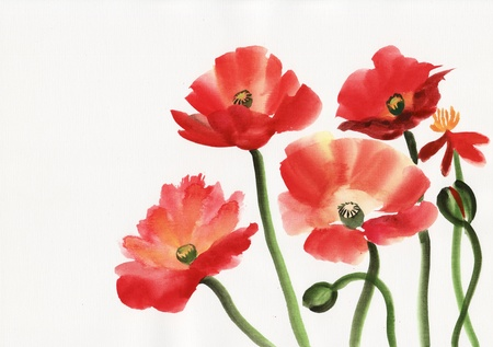 Original art, watercolor painting of red poppies Stock fotó - 17850588