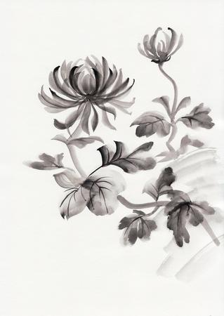 Aquarel schilderij van Chrysanthemum. Aziatische stijl.