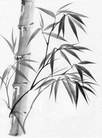 Original art, watercolor painting of bamboo, Asian style painting. photo