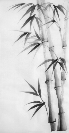 black and white plant: Original watercolor painting of bamboo, Asian style