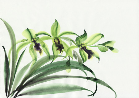 Watercolor original painting of green orchids – asian style painting