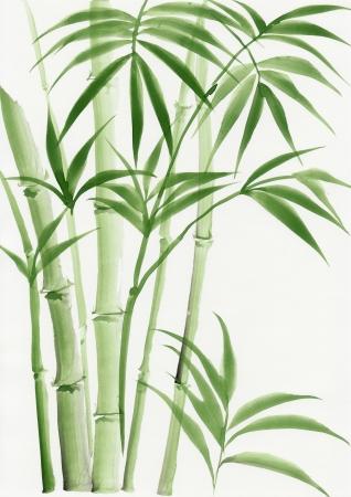 Origineel aquarel schilderij van palm bamboe Stockfoto
