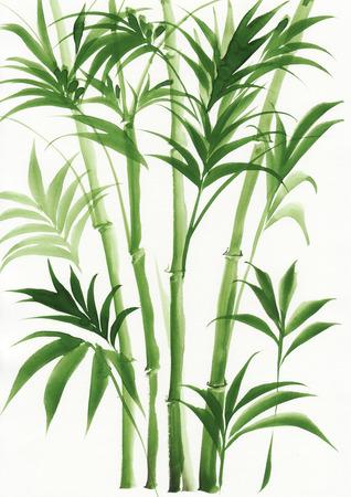 Peinture originale d'aquarelle de palmier bambou