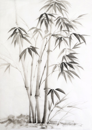 La pintura original de la acuarela de bambú. Estilo asiático. Foto de archivo - 25292653