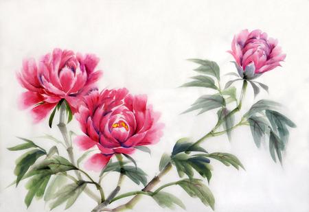 Aquarelle sur papier de pivoines roses. Style asiatique.